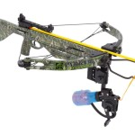 Crossbow Fishing – Shooting Fish With A Crossbow